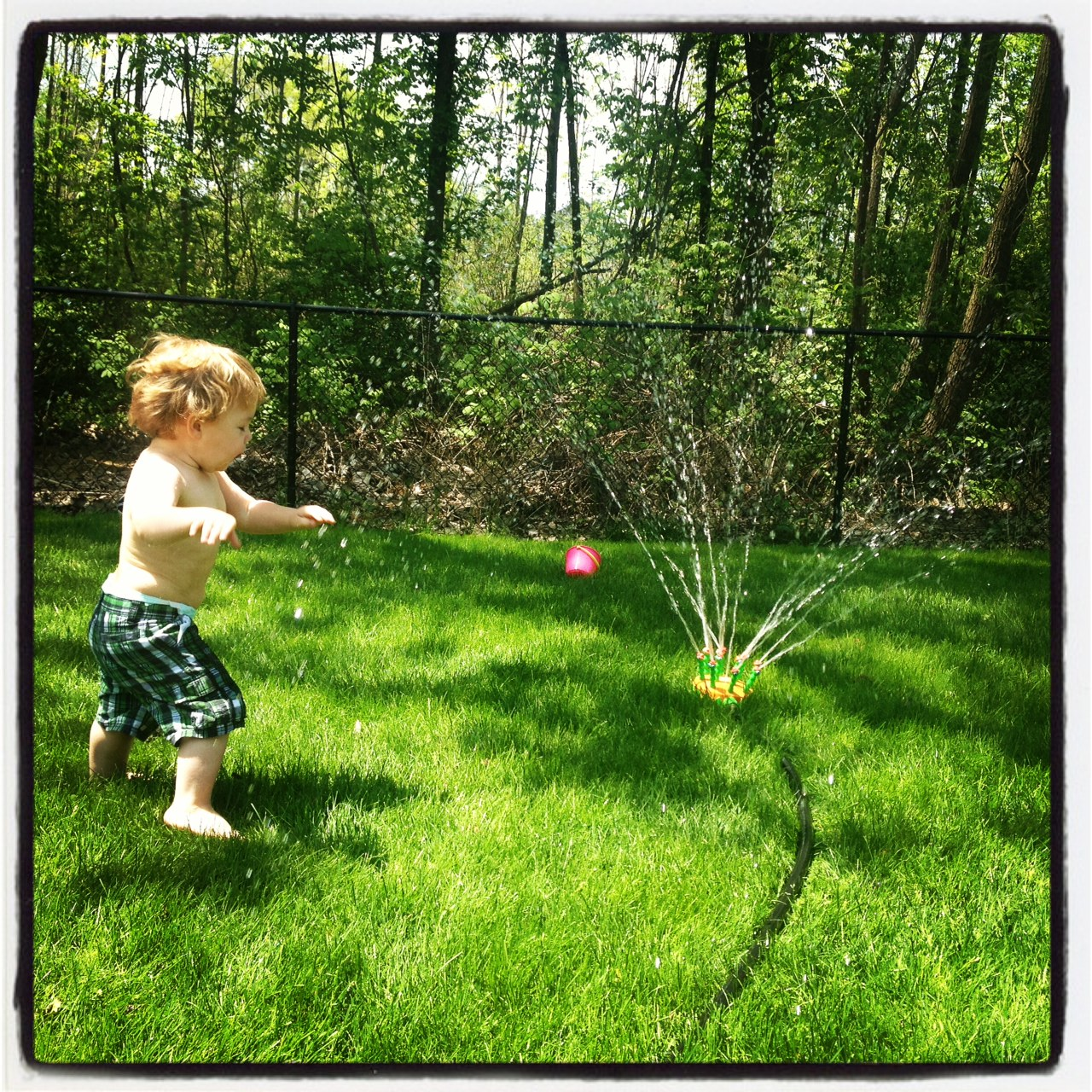 plaid shorts, baby chub, a sprinkler, and freedom. blissful.